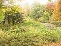 Berlin - Tiergarten - geo.hlipp.de - 29876.jpg