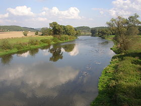 Berounka River CZ from Dolany Bridge 596.jpg