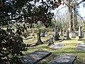 Beth Israel - Beth Israel Cemetery, Woodville (Wilkinson County), Mississippi.jpg