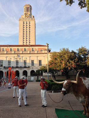 Bevo (mascot) - Image: Bevo at the Tower