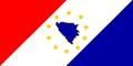 BiH zastava 2.PNG