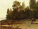 Bierstadt Albert The Fallen Tree.jpg