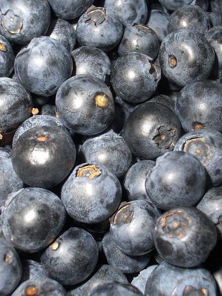 Soubor:BilberriesBig.jpg