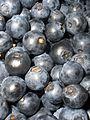 BilberriesBig.jpg