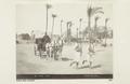 Bild från familjen von Hallwyls resa genom Egypten och Sudan, 5 november 1900 – 29 mars 1901 - Hallwylska museet - 91708.tif