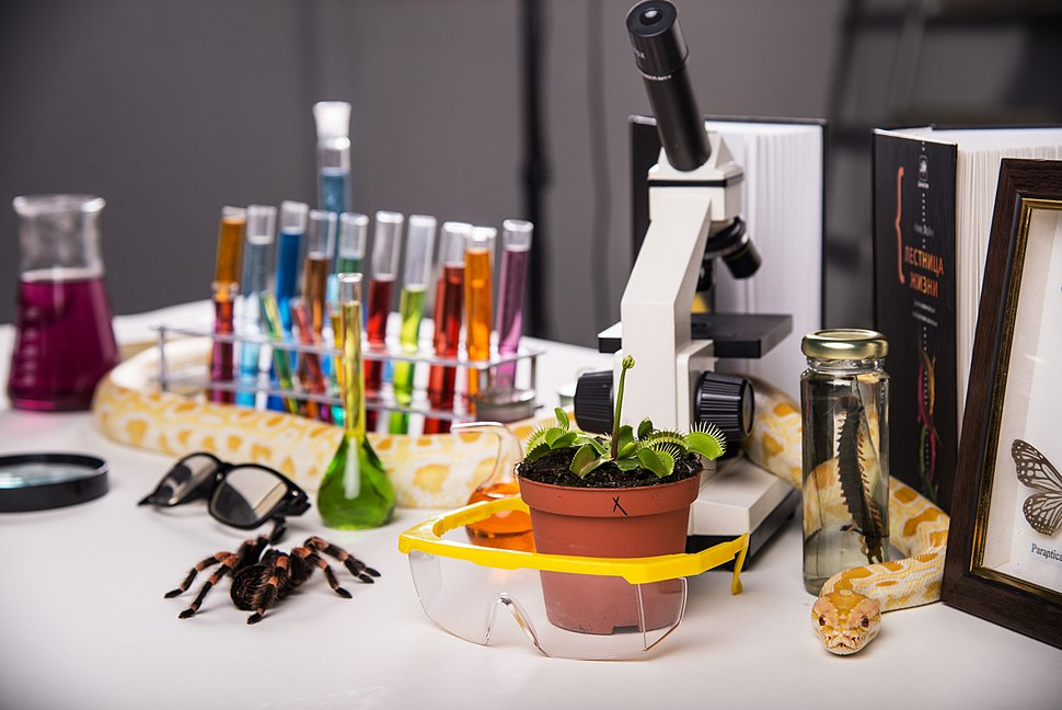 Biologist's table
