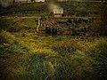 Bir Kasım Günü - A Day In November - panoramio.jpg