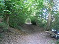 Bisham, Quarry Wood Restricted Byway - geograph.org.uk - 489306.jpg