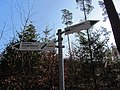 Blankenberg Wald Wegweiser Wanderweg 2014-03-11 9.JPG