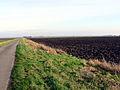 Blankney North Drove - geograph.org.uk - 110434.jpg
