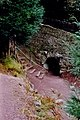 Blarney - Rock Close tunnel entrance from the castle - geograph.org.uk - 1634213.jpg