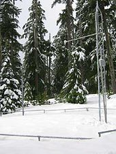 A latticed metal tower has been placed inside a metal fence in a snow-covered forest clearing.