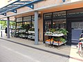 Bloemenwinkel Heksenwiel DSCF9359.JPG