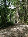 Bluestone National Park Resort nature trail.jpg