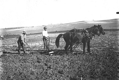 Bnei Brak. Zvi Oron-Orushkes. 1925-1928 (id.14457123).jpg
