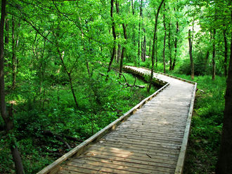 Lake Conestee Nature Park - Image: Boardwalk conestee park