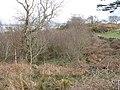Boggy area, Tramiag - geograph.org.uk - 999025.jpg