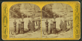 Boston Common, from Robert N. Dennis collection of stereoscopic views 3.png