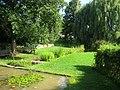 Botanischer Garten der Universität Würzburg - IMG 6840.JPG