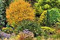 Bressingham Gardens (22823450443).jpg
