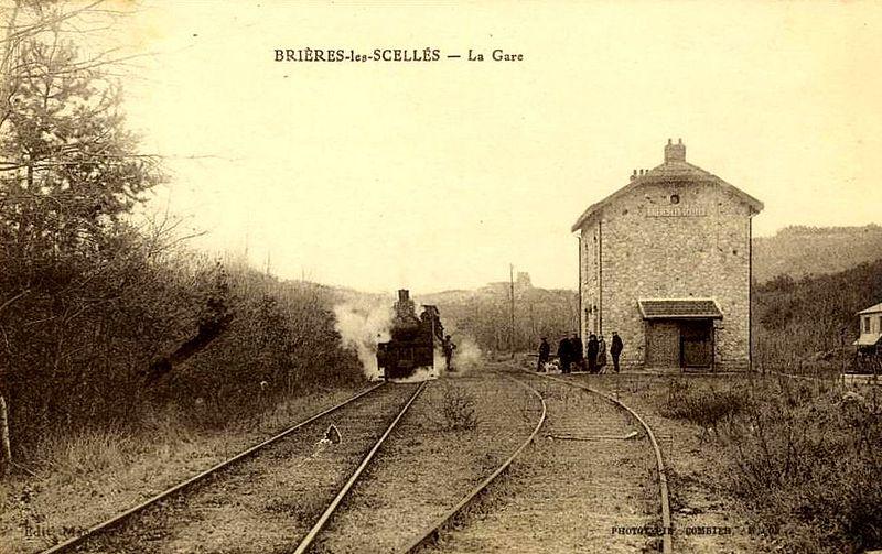 File:Brières-les-Scellés (91), la gare CGB.jpg