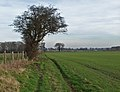 Bridleway, Holme on the Wolds - geograph.org.uk - 684553.jpg