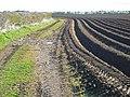 Bridleway to Brinklow - geograph.org.uk - 760225.jpg