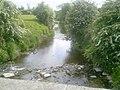 Broadmeadow River, Co Dublin - geograph.org.uk - 1880300.jpg