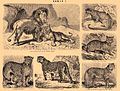 Brockhaus and Efron Encyclopedic Dictionary b31 472-1.jpg
