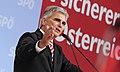 Bundesparteirat 2013 (9425894485).jpg