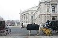Burgtheater Vienna (375834291).jpg