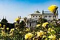 Burgtheater Wien.jpg
