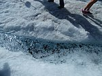 By ovedc & anat - Athabasca Glacier - 12.jpg