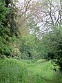 Byway between Yarwell and Nassington - May 2014 - panoramio.jpg
