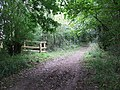 Byway to Thorns - geograph.org.uk - 992510.jpg
