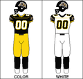 CFL Jersey HAM 2005.png