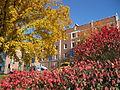 CMH fall front garden 01.JPG