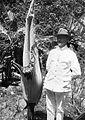 COLLECTIE TROPENMUSEUM Man naast een Amorphophallus titanum TMnr 10006013.jpg