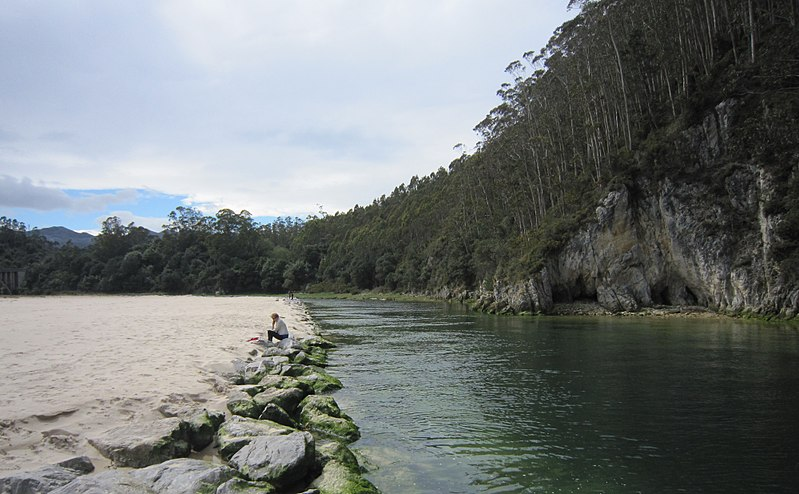 Cabra river mouth.jpg