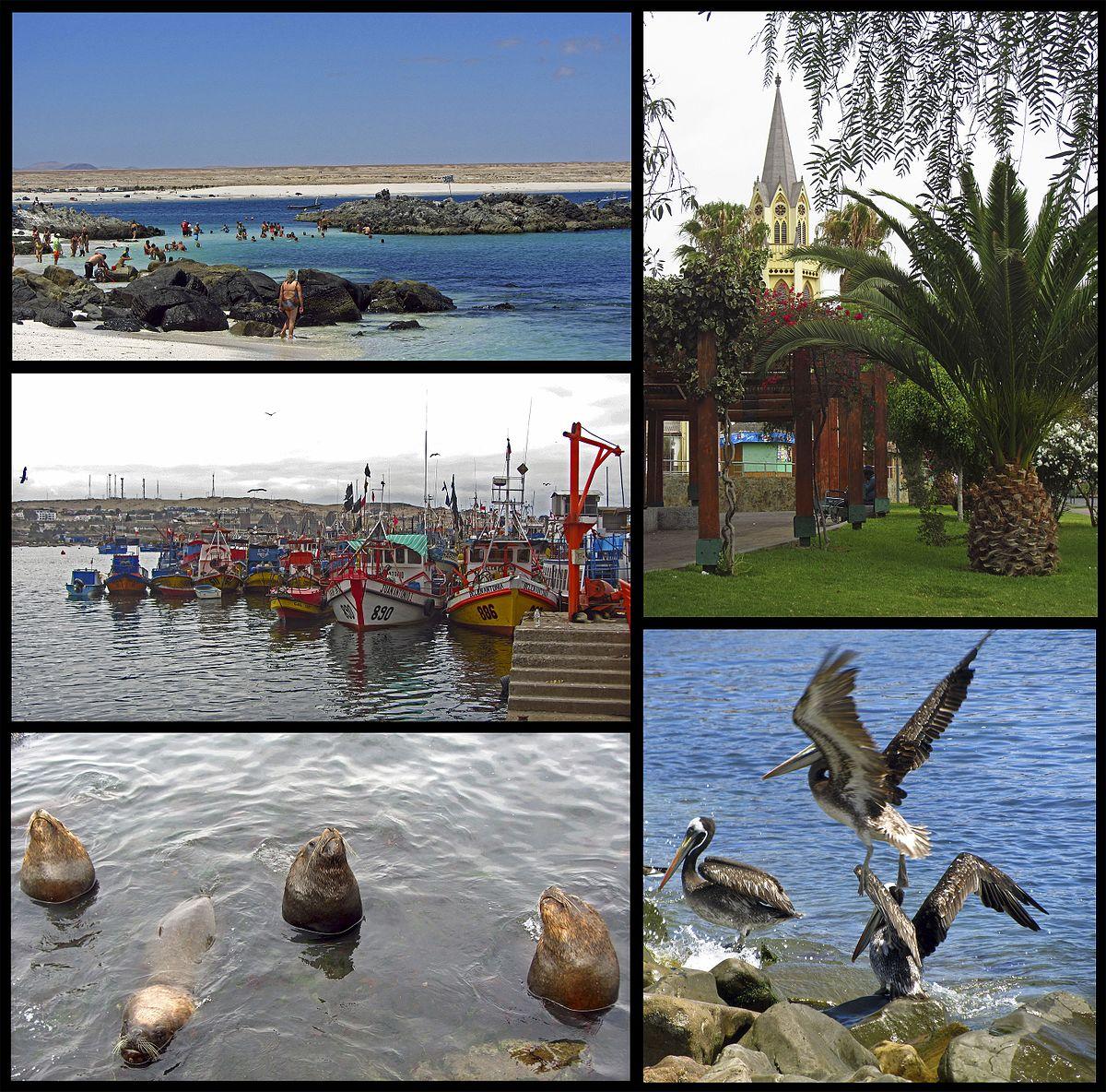 Caldera (Chile) - Wikipedia, la enciclopedia libre
