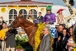 A reddish-brown racehorse with a blanket of black and yellow flowers draped across his shoulders with his jockey in the saddle and surrounded by a group of smiling people