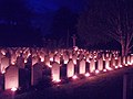 Candles placed at the graves during the All Souls' Day ceremony of Homage and Remembrance at Newark Cemetery. Picture, Laurence Goff - panoramio (11).jpg