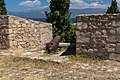 Cannon at Karababa castle Chalkida Greece.jpg
