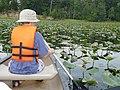 Canoe Tour, Belmont Bay (5998923987) (2).jpg