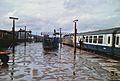 Cardiff 9 75510 1.jpg