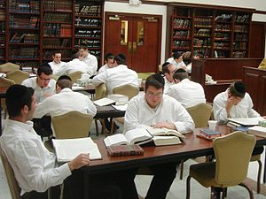 Chavrusa - Chavrusas (study partners) sit opposite each other or side by side in the beis medrash of Yeshiva Gedola of Carteret