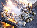 Cashew roasting trad 3.jpg