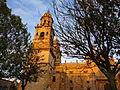 Catedral de Morelia después de llover..JPG