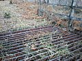 Cattle Grid in Forest - geograph.org.uk - 1113309.jpg