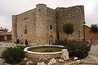 Cavia castillo 01.jpg
